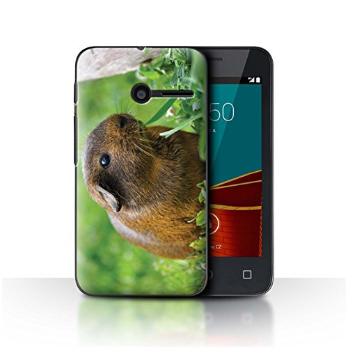 Phone Case for Vodafone Smart First 6 Cute Pet Animals Guinea Pig Design Transparent Clear Ultra Slim Thin Hard Back Cover