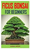 ficus bonsai for beginners: discover the complete guides on everything you need to know about ficus bonsai for beginners