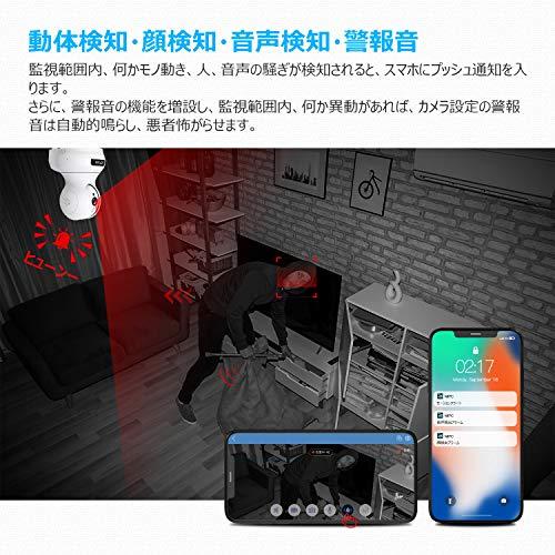 Lefun『ネットワークカメラ』