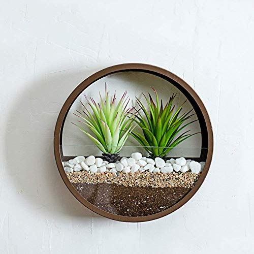 Round glass wall vase planter
