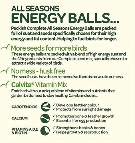 Peckish Complete Energy Suet Fat Balls for Wild Birds