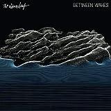 Songtexte von The Album Leaf - Between Waves