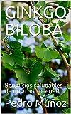 GINKGO BILOBA: Beneficios saludables de un árbol milenario