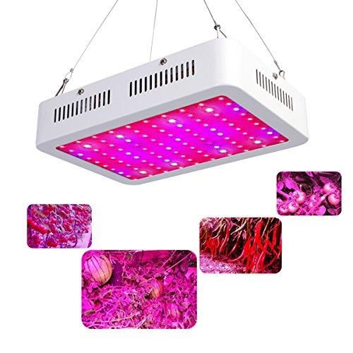 Lampwin Lampada per Piante Crescita 300W 100 LED Full Spectrum, Lampada da Coltivazione Idroponica per Indoor Serra Grow Box (6 Bande: Rosso:68, Blu:20, Bianco:8, Orrancia:2, UV:1, IR:1)