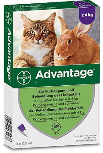 Advantage 40 mg für kleine Katzen und kleine Zierkaninchen,1.6ml