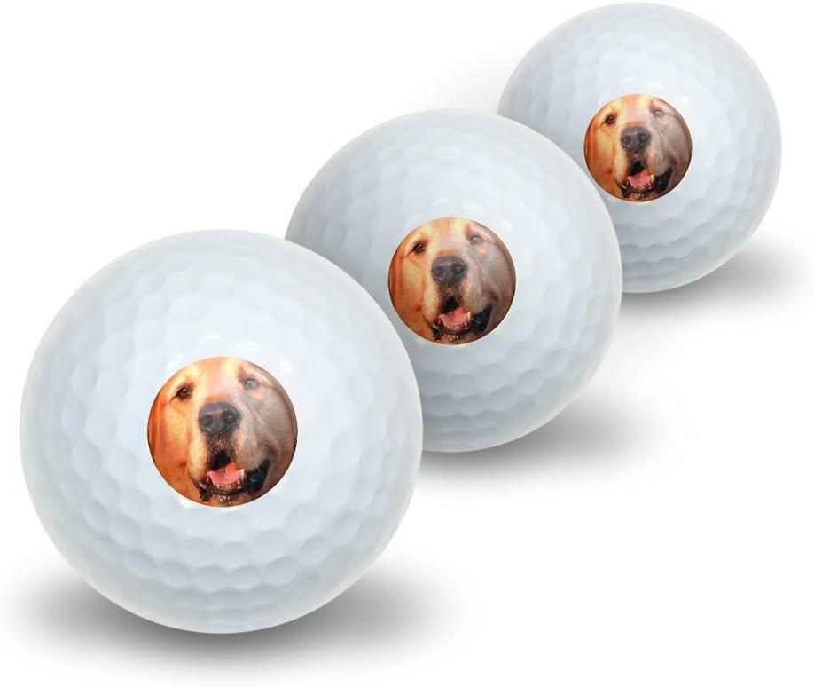 Graphics and More Golden Retriever Dog SALENEW very popular Golf sale 3 Novelty Balls Pack