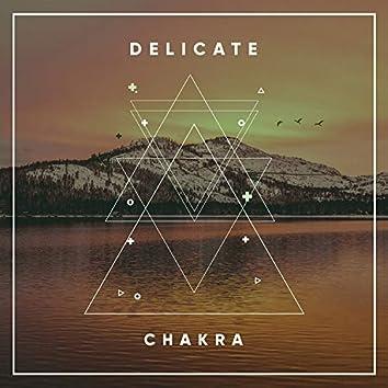 # Delicate Chakra