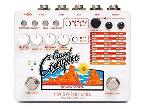 Electro Harmonix Grand Canyon Delay & Looper, SG_B07KWGH69H_US
