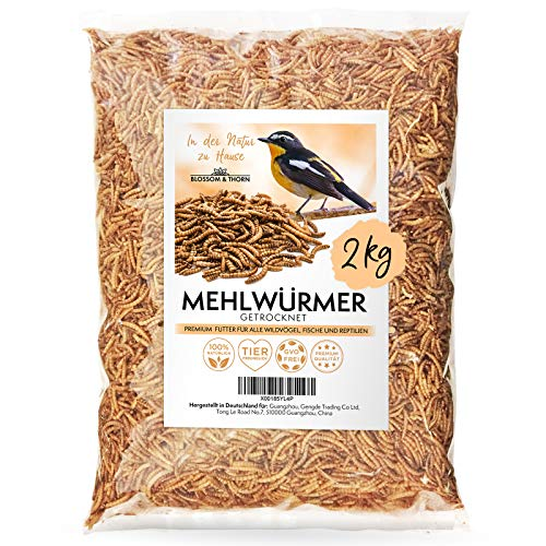 Blossom&Thorn Mehlwürmer getrocknet 2kg │ Protein Snack für Vögel, Fische, Reptilien u.v.m.