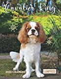 Cavalier King Charles Spaniel 2022 Calendar: Great 18-month Grid Calendar 8.5 x 11 from Jul 2021 to Dec 2022 for scheduling, planning, and note!!!
