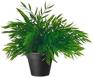comprar comparacion IKEA FEJKA - Artificial planta en maceta, Casa del bambú 10 cm