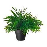Planta artificial en maceta de IKEA, de la colección FEJKAde surtido de hierbas y...