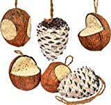 dobar 24102e - Mezcla de Comida para pájaros, Mezcla de pienso para Colgar, Cuatro Cocos Rellenos y Dos Tapones Grandes, Color Natural