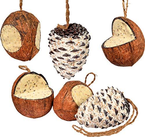 dobar 24102e Vogelfutter-Mix, Fettfutter-Mischung zum Aufhängen, Vier gefüllte Kokosnüsse und Zwei Riesenzapfen, Natur