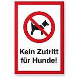 Kein Zutritt Hunde, Hunde Kunststoff Schild - draußen bleiben/Hinweisschild/Türschild/Verbotsschild - Hundeverbot, Verbot Hunde - Restaurants, Läden, Geschäfte, Büros