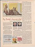 Puss N Boots Burmese Cat Food 1957 Antique Home Pet Food Advertisement