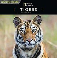 タイガース ナショナルジオグラフィック スクエアウォール C