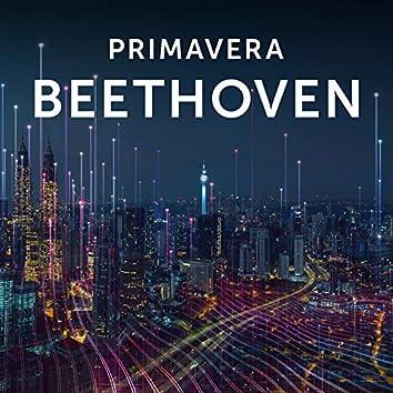 Primavera Beethoven