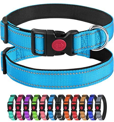 Joytale Reflektierend Hundehalsband,Einstellbare für Training Halsband aus Nylon mit Gepolstertem für Welpe Kleine Hunde,Hellblau,XS