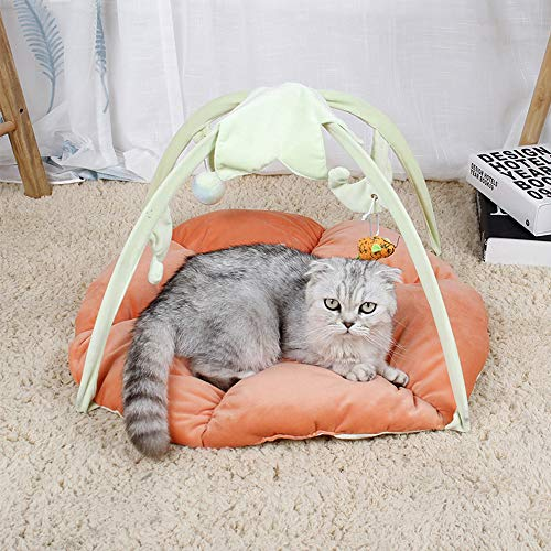 MULEI Cat Activity Center Interactive Play Area Station for Cats Kittens with...