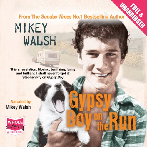 Gypsy Boy on the Run audiobook cover art