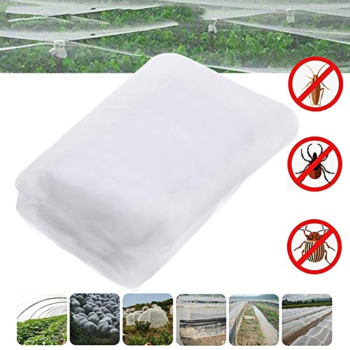 Qjifangzyp Serre épaissie de Protection des Oiseaux Encryption Filet à Insectes Jardin Entretien Net Plantes de Fruits de légumes Couverture Protect Mesh (Taille: 3M × 10M) Uniquement Vendu à