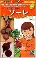 【種子】 Gusto Italia ビーツ バルバビエートラ ソーレ トキタ種苗のタネ