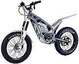 Bicicletas Eléctricas, Bici de suciedad D1 20 y 24 pulgadas Bicicleta de suciedad eléctrica para adultos, motocicleta eléctrica con batería 30Ah Motor 1200W DC, freno de disco hidráulico, gris ,Bicicl
