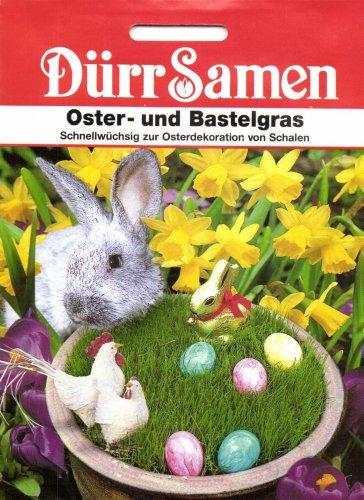 Dürr Samen 0225 Oster- und Bastelgras (Gräsersamen) [MHD 12/2019]