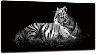 Best white tiger canvas wall art Reviews