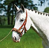 Busse Kappzaum Professional, Pony, Hazel/Messing