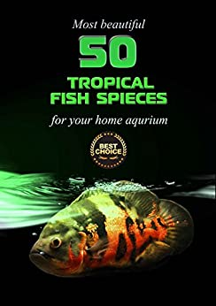 50 Tropical Fish Species for your home aquarium - most ...