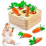 Comius Sharp Zanahorias Ensamblando Juguetes Rompecabezas de Madera Juguete para Niños Rompecabezas Juegos de Madera Zanahorias Clasificación para Niños Regalo de cumpleaños, Navidad