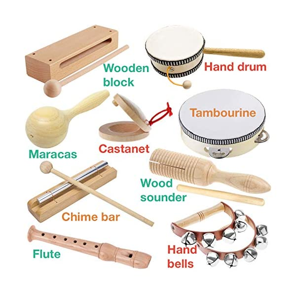 Stoie's Musical Instruments Set for Toddler and Preschool Kids Music Toy - Wooden Percussion Toys for Boys and Girls…