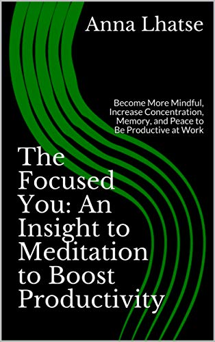 The Focused You: An Insight to Meditation to Boost Productivity: Become More Mindful, Increase Concentration, Memory, and Peace to Be Productive at Work (English Edition)