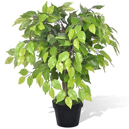 Kunstpflanze Künstlicher Zwerg-Ficus...