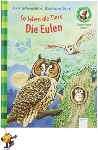 So leben die Tiere. Die Eulen: Der Bücherbär. Sachwissen Natur. 1. Klasse