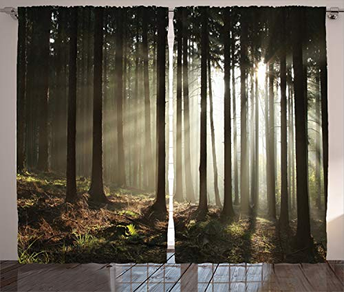 """Ambesonne Forest Curtains, Sun Rays Entering Coniferous Forest on a Misty Autumnal Morning Scenery Picture, Living Room Bedroom Window Drapes 2 Panel Set, 108"""" X 90"""", Black Grey"""