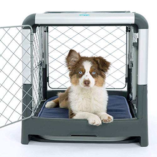 Diggs Revol Dog Crate (Collapsible Dog Crate, Portable Dog Crate, Travel Dog Crate, Dog Kennel) for...