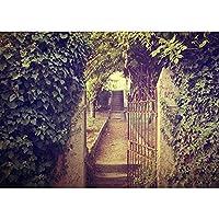 ビニール写真の背景古典的な木製のドアのテーマ写真の背景写真スタジオポーズ小道具A89x6ft / 2.7x1.8m