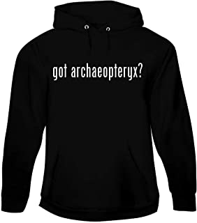 got Archaeopteryx? - Men's Pullover Hoodie Sweatshirt