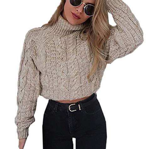 Autunno e Inverno Corto Maglioni Casual Collo Alto Maglie a Manica Lunga Sweater Cime Pullover Donna Moda Maglieria Tops Jumpers Bluse