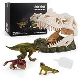 Dinosaur Skeleton Spray Model Playsets Tyrannosaurus rex Lizard Archaeopteryx Figure Big Dinosaur Skull Small Dinosaur Skull Desktop Decoration Collection Party Favors Toys for Kids
