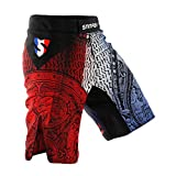 SMMASH France Pantalones Cortos de Deporte para Hombre para el Entrenamiento de MMA, BJJ, UFC y Gimnasio (L)