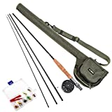 Walmeck 9' Fly Fishing Rod and Reel Combo with Carry Bag 10 Flies