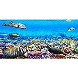 AWERT Fondo de acuario de 61 x 30 cm Coral Tropical Fish Undersea Fondo de vinilo duradero (no adhesivo)