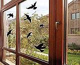 Adesivi anti-collisione per finestra, con sagome di uccelli, protezione per porte in vetro e salva-uccelli (12 silhouette)