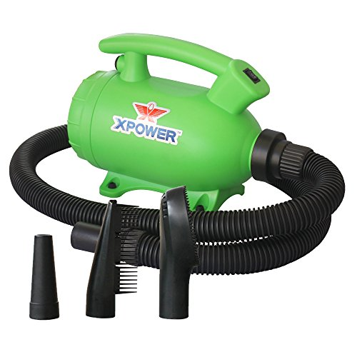 XPOWER B-55 Portable Home Pet Grooming Dryer