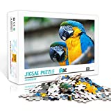 Puzzle Hand Speed ​​Competition 1000Pcs Loro Animal Análisis y lógica 75x50cm Rompecabezas de madera