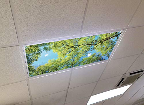 Forest Canopy View - 2ft x 4ft Drop Ceiling Fluorescent Decorative Ceiling Light Cover Skylight Film Filter